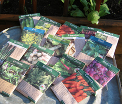 A seed selection of our gardener.