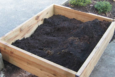 The soil in this bed will be the best mix.