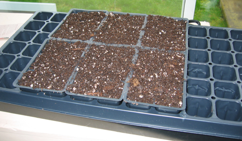 Starting seed requires a different soil mix