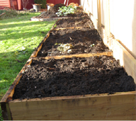 Raised garden beds after fall cleanup