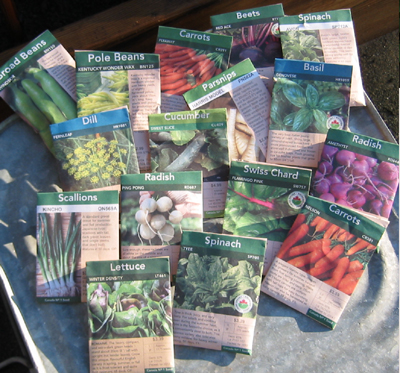 Vegetable growing directions are on the seed package ... read them.
