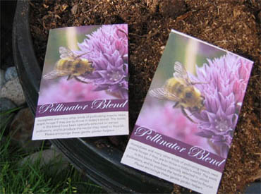 Vegetable garden seeds can be for beneficial flowers